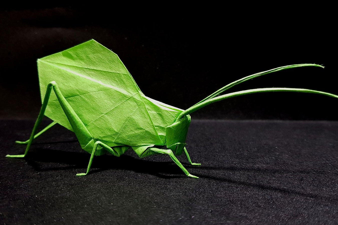 Best origami insects of 2018