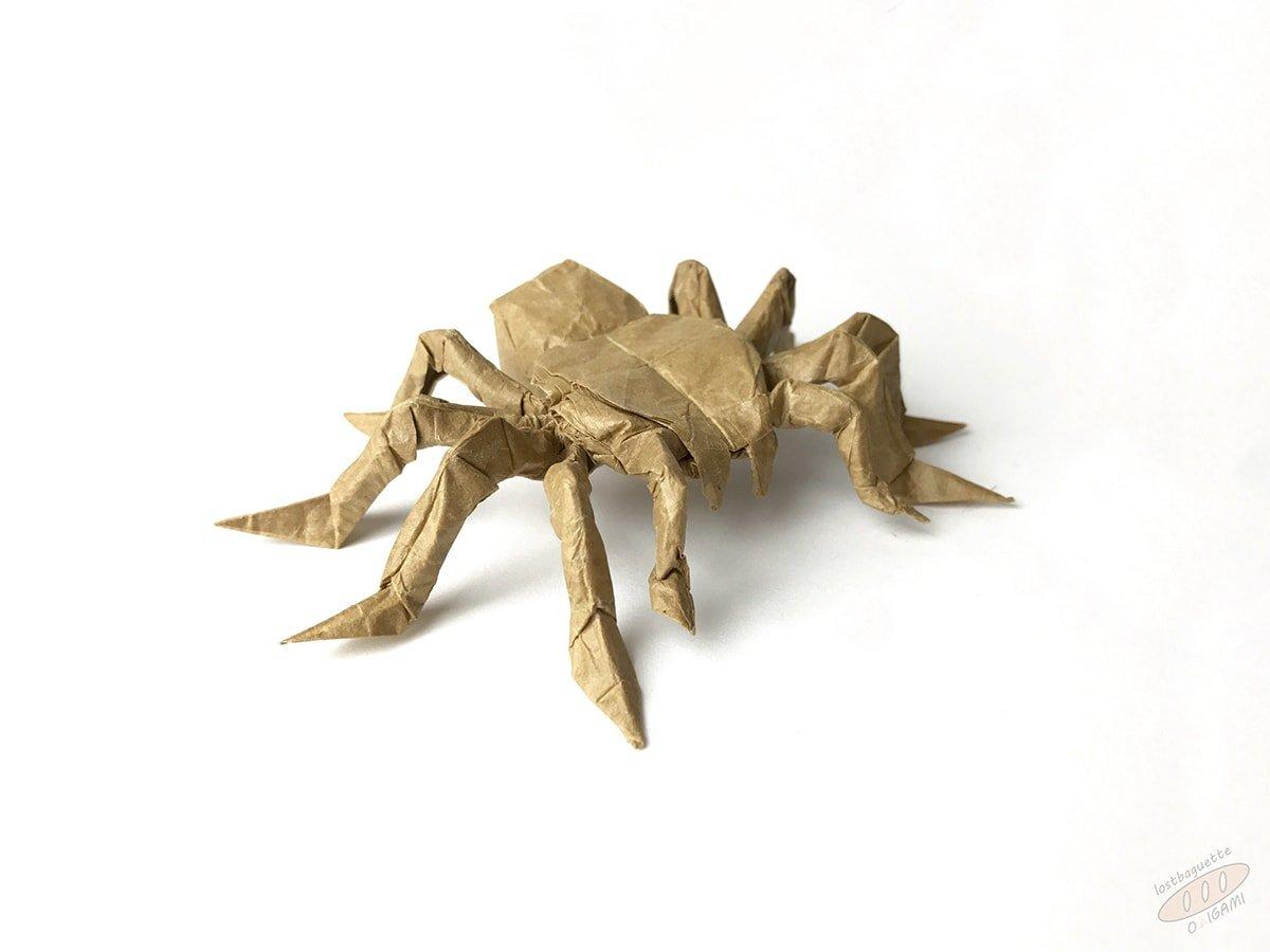 Cute Tarantula