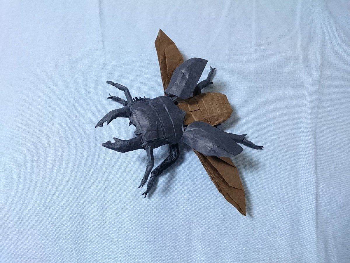 Flying Beetle by Kota Imai