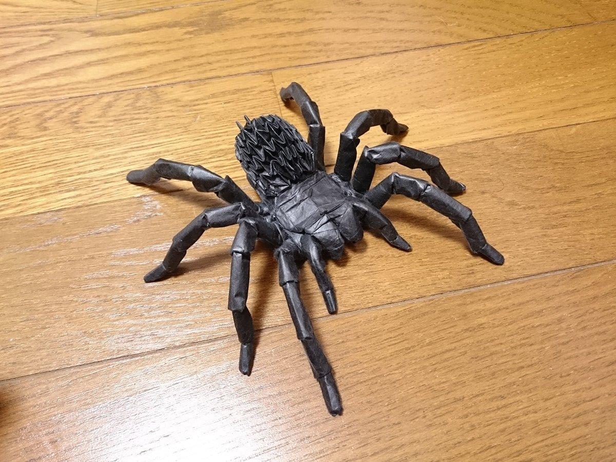 Tarantula by Kota Imai